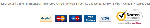 Our Credit Card Icon Collection Now Used On Debenhams, Getting Personal And Clarks Websites